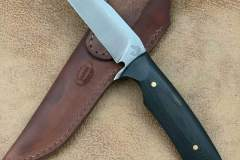 black-shepherd-F